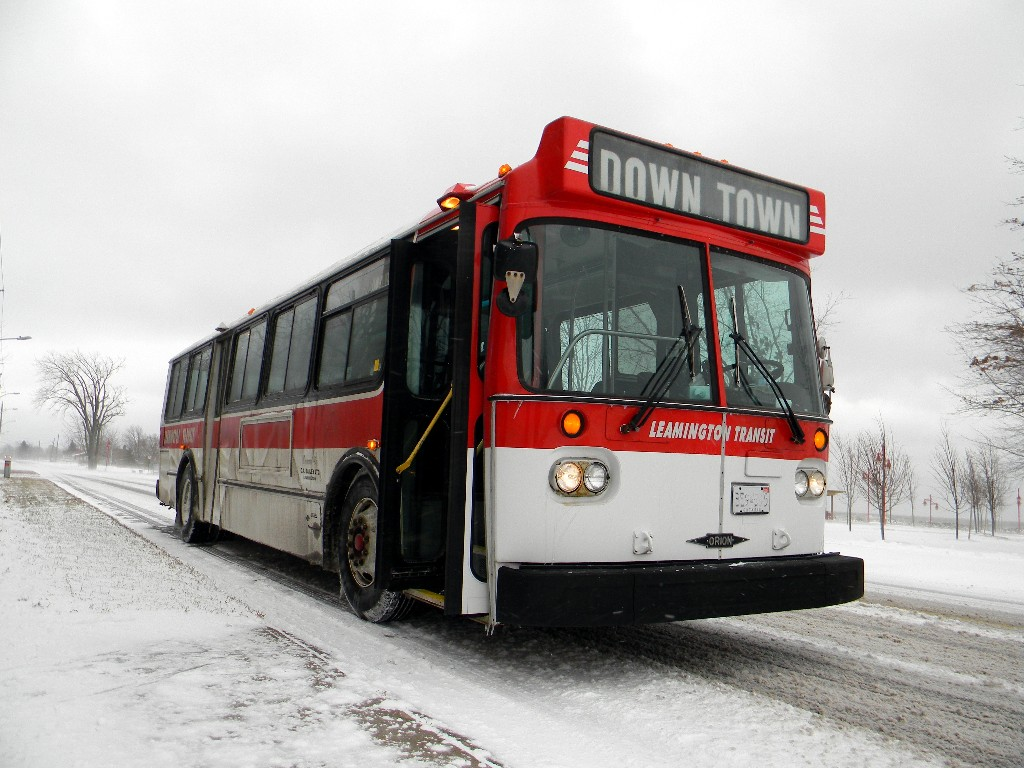 Leamington Transit 181